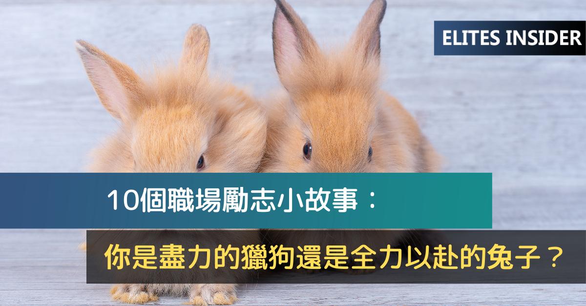 10個職場勵志小故事:你是盡力的獵狗還是全力以赴的兔子?
